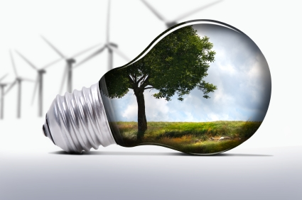 iStock 000007618481XSmall 15 Ways to Make a Positive Environmental Impact