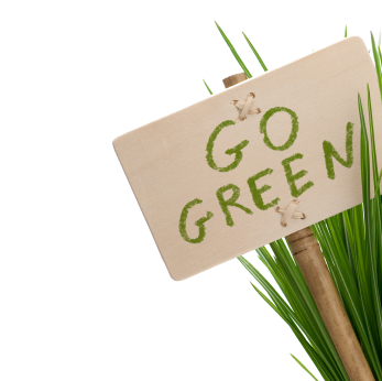 go green on a budget