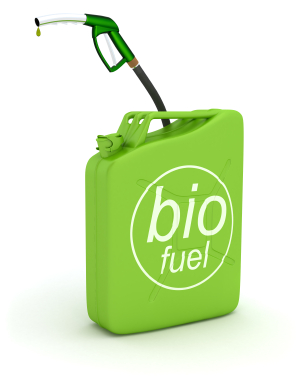 iStock 000017471509XSmall Alternative and Sustainable Energy Sources: Biodiesel and Biomass Fuels