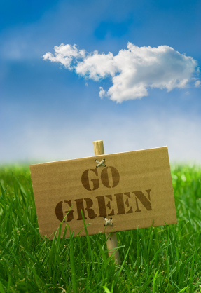 7 Simple Ways to Go Green in 2013