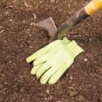 Garden Shovel and Gloves