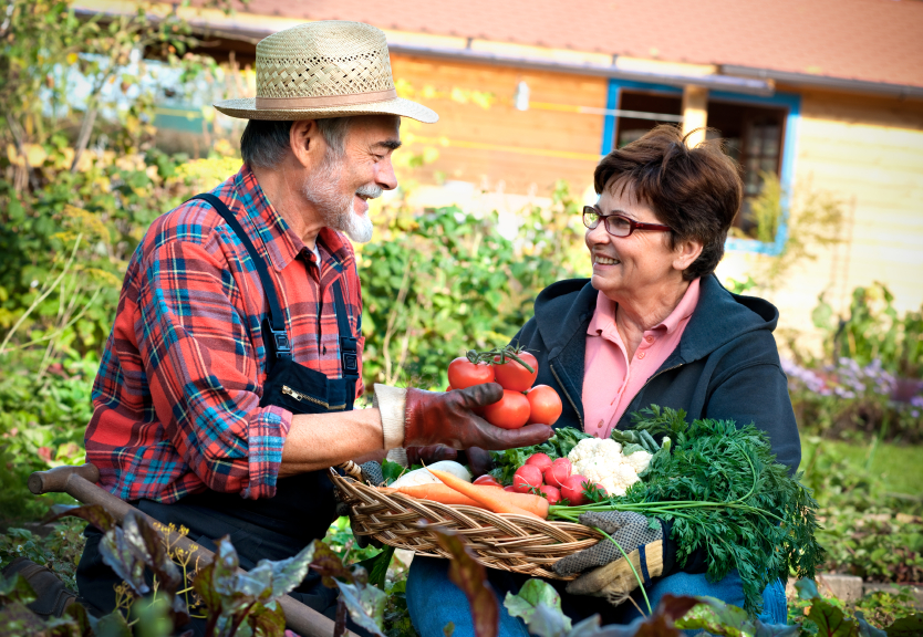 How to Pick the Right CSA for Your Needs