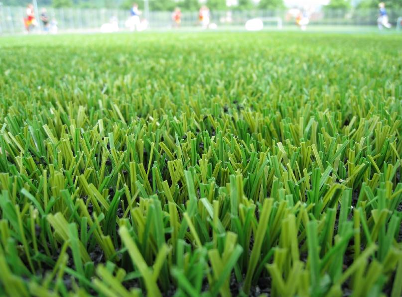 Time to Favor Fake Grass?